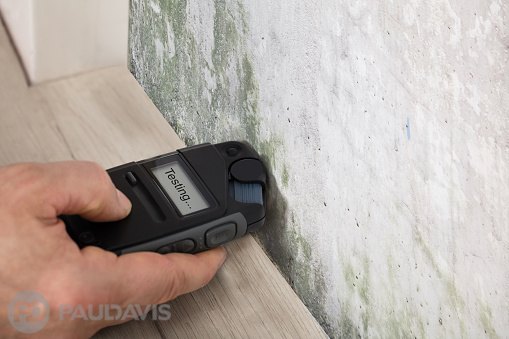 Measuring Wall Moisture